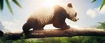 Earth: One Amazing Day 2017 - English Movie in Abu Dhabi ...