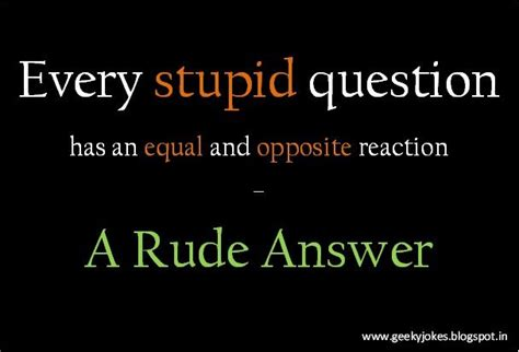 stop  stupid questions humour quotes  creation