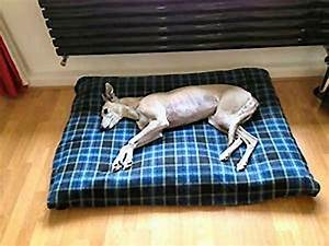 945 best my pet images on pinterest doggies dog items With non destructive dog bed