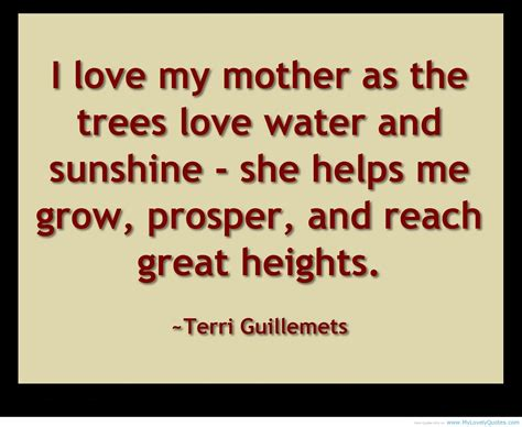 quotes  mothers love quotesgram