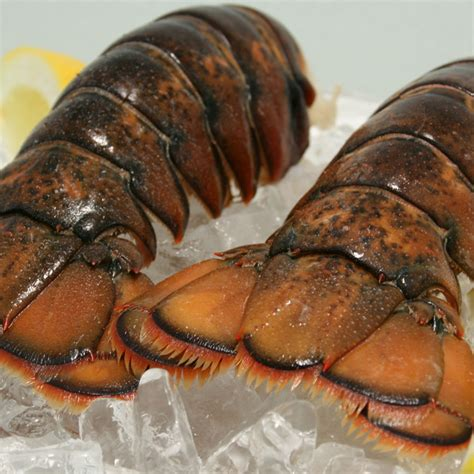 Australian spiny lobster tails can be grilled, steamed, baked, poached or broiled. LOBSTER TAILS | Food Distributors Australia