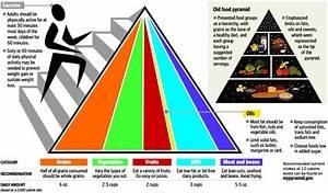 New Food Pyramid Coming June 2, USDA Says | KDT Optometry ...