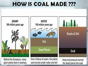 Fossil Fuels Formation For Kids   www.pixshark.com ...
