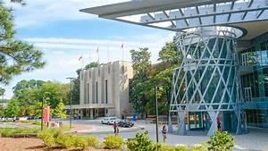 Resume For Undergraduate College Student Undergraduate Admissions Nc State University