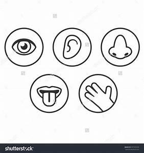 Five senses clipart - Clipart Collection | Melonheadz: 5 ...