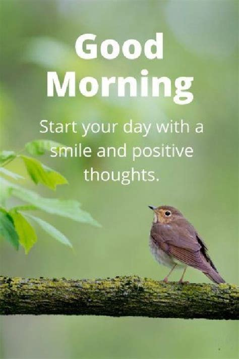 Morning Wishes For Positive Energy Motivational 35 Of The Morning Quotes And Images Positive Energy