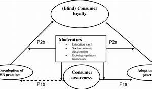 Figure1  A Model Explaining The Link Between Consumer