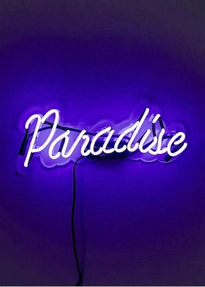Aesthetic Paradise Eternal Moonshine Neon Rainbow Violet