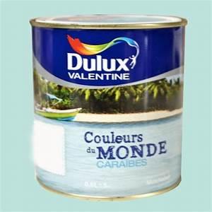 Peinture Dulux Valentine Couleur Du Monde : dulux valentine couleurs du monde cara bes pastel pas cher ~ Dailycaller-alerts.com Idées de Décoration