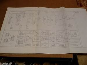 1975 Ford F500 F600 F700 Truck Wiring Diagram Schematic