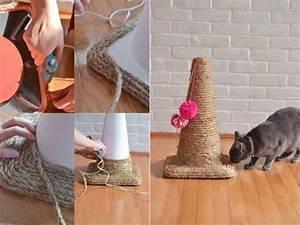 Jouets Pour Chats D Appartement : les 25 meilleures id es de la cat gorie jouets pour chat ~ Melissatoandfro.com Idées de Décoration