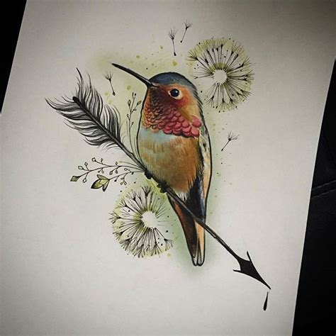 hummingbird   arrow elapour bird kolibrie art