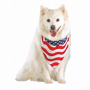 Stars and Stripes Patriotic Dog Bandana with Same Day ...