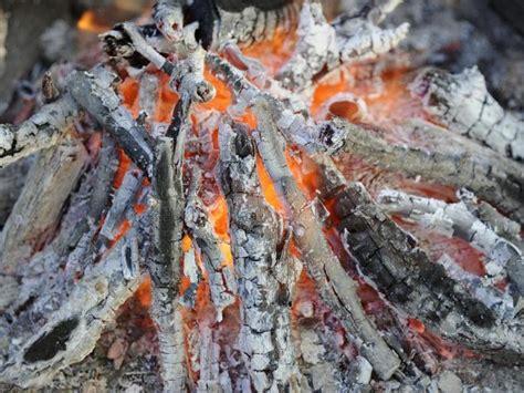 compost de cuisine utiliser les cendres au jardin feminin bio