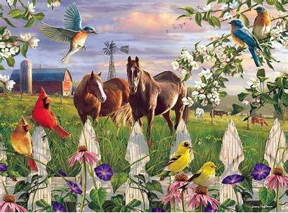 Puzzle Meadow Jigsaw Puzzles Evening Horses Birds