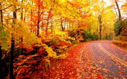 Leaves Fall Desktop Wallpapers Autumn