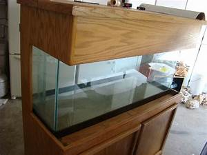 75 Gallon Saltwater Aquarium