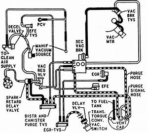 Mustang 6 Cylinder Vacuum Diagram  Mustang  Free Engine Image For User Manual Download