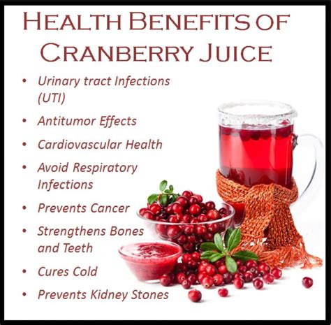 cranberries   urinary tract infections  myth