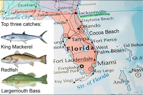 florida fish fishing places destin beach map jacksonville species none them water panama three catch seafood