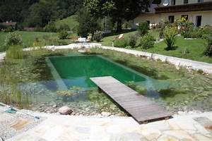 Schwimmteich Oder Pool : schwimmteich mit steinumrandung ~ Whattoseeinmadrid.com Haus und Dekorationen