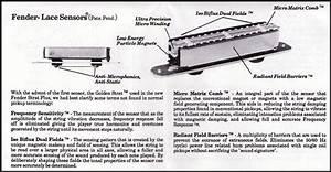Fender Stratocaster Strat Plus