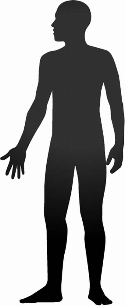 Human Clipart Silhouette Outline Shadow Healing Clip