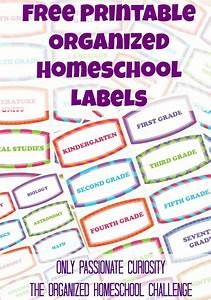 The Organized Homeschool Challenge: What to do with ALL
