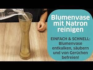 Backofen Reinigen Mit Natron : blumenvase reinigen mit natron youtube ~ Markanthonyermac.com Haus und Dekorationen
