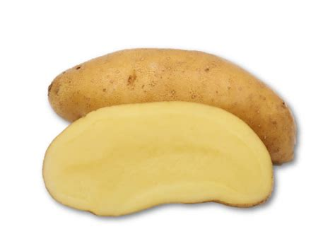 cuisiner la ratte kartoffel 39 la ratte 39 kartoffel müller