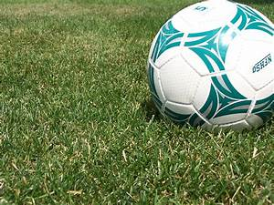 Stirling Panthers womens soccer team wins League Division ...