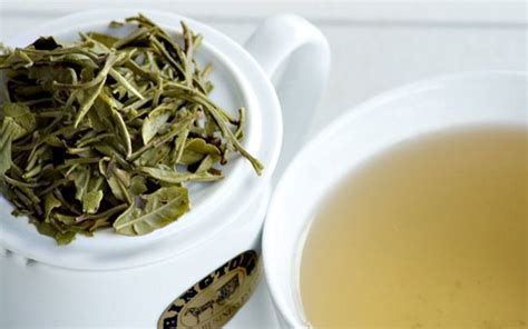 white tea caffeine does white tea have caffeine