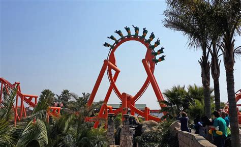 Fantastic Family Fun At Gold Reef City  All 4 Women