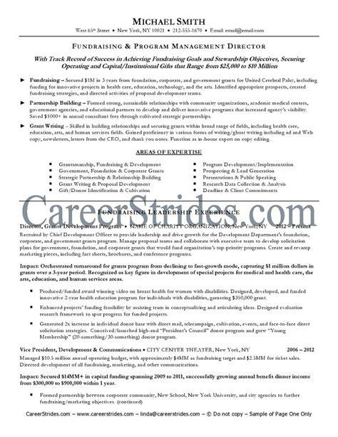 executive resume sle exle