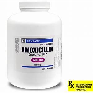 Amoxicillin Rx, Capsules, 500 mg x 500 ct