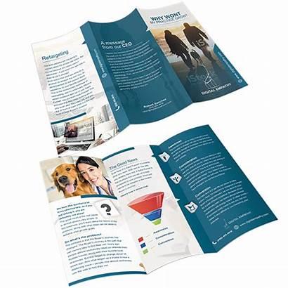 Brochure Company Creative Designer Works