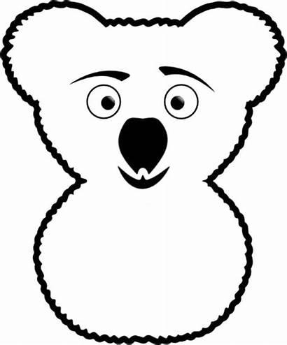 Koala Coloring Bear Funny