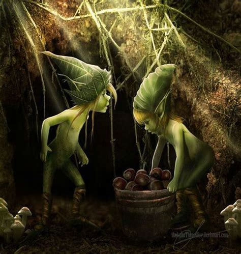 pixies fairies pixies brownies pinterest