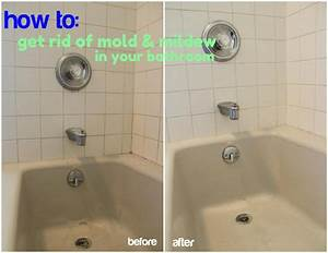 the dirty truth about my bathroom christinas adventures With how to get rid of bathroom mildew