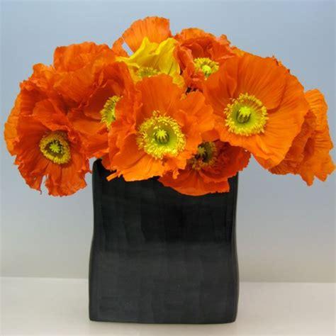 december flower ideas  pinterest birth month