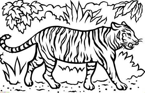 Coloring Harimau by Hasil Mewarnai Gambar Singa Coloringpages Asia