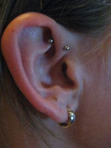 Daith Piercing Information With Precautions And Prcocudures