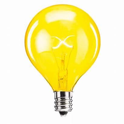 Bulb Yellow Scentsy Bulbs Warmer Replacement Watt