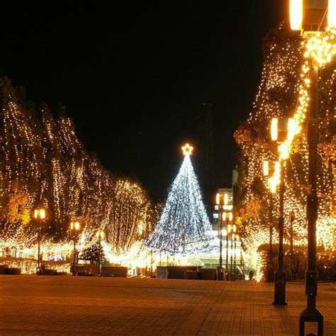 250led rgb fairy light christmas string lights wedding