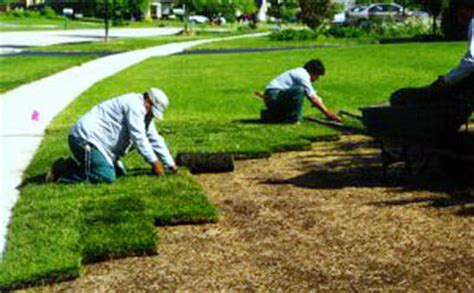 how to put in a new lawn sod installation