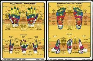Reflexology Chart Top Of Foot Active Life 2009 Muller Activa Page 2