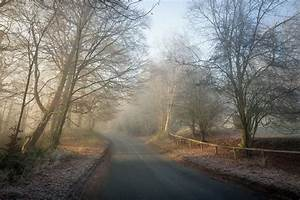 Road, Trees, Winter, Wallpapers, Hd, Desktop, And, Mobile, Backgrounds