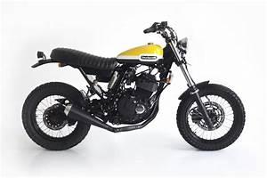 Racing Caf U00e8  Suzuki Dr 650 By Deus