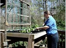 Gardening in a Waist High Raised Bed Garden YouTube