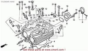 Goldwing Starter Wiring Diagram